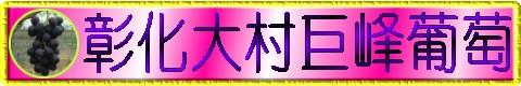 大村葡萄,大村巨峰葡萄,葡萄團購,台灣,臺灣,巨峰葡萄,彰化大村葡萄,葡萄